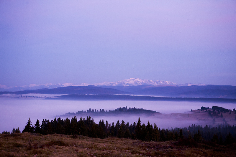 New_Dawn_Over_Carpathians_MR_01